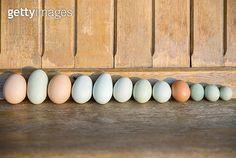 Fresh organic multicolor eggs in a row - gettyimageskorea