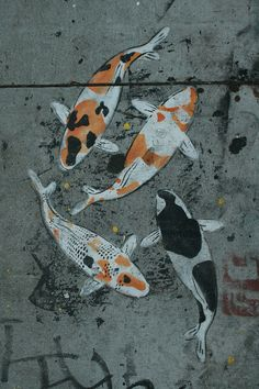 Koi- could paint at the bottom of a fountain