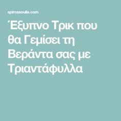 Έξυπνο Τρικ που θα Γεμίσει τη Βεράντα σας με Τριαντάφυλλα Vegetable Garden For Beginners, Gardening For Beginners, Crafts Beautiful, Homemade Beauty, Clean House, Organic Gardening, Outdoor Gardens, Backyard, How To Plan