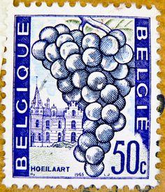 beautiful stamp Belgium 50c postage grape