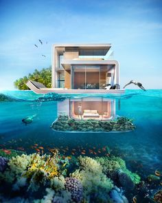 maison-flottante dubai7.jpg