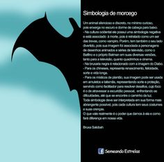Prosa e Poesia Catia Garcia: Simbologia do Morcego