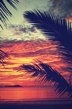 Sunset Mission Beach, Queensland Australia. sea shore, relax, water, vacations, sand, destinations, tropical, tropics, warm, ocean, sea, seas, paradise, palm trees, salt water, salt life, #beaches #islands #vacations