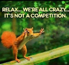 we are all crazy funny quotes quote lol funny quote funny quotes humor. It IS a competition! Wtf Funny, Funny Cute, Funny Memes, Hilarious, Jokes, Crazy Funny, Crazy Meme, Crazy Humor, Seriously Funny
