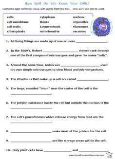 cell membrane worksheet - Google Search | Movement across plasma ...