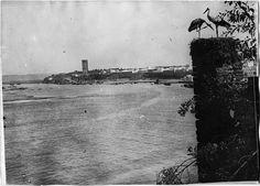 Rabat  Tour Hassan  Vue de la ville et de la Tour Hassan, prise de la kasba des Oudaïas, et deux cigognes  1917.07.24