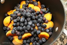 Blueberries and Apricots