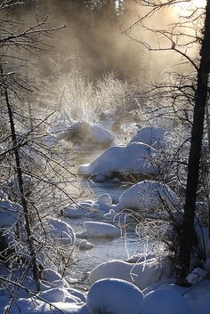 The Mists of McIntyre Marsh by Chilkoot, via Flickr