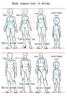 Manga Drawing Ideas Anime body style comparison by ~Yumezaka on deviantART - Body Reference Drawing, Drawing Body Poses, Art Reference Poses, Design Reference, Drawing Body Proportions, Anatomy Reference, Drawing Anime Bodies, Manga Drawing, Figure Drawing