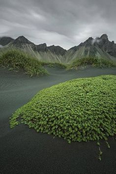 (Green Island) Iceland by Raymo Photography by sylvia alvarez Places To Travel, Places To See, Places Around The World, Around The Worlds, Beautiful World, Beautiful Places, Outdoor Fotografie, Landscape Photography, Nature Photography