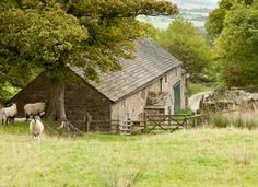 Large Group Accommodation for Holidays and Activities in the Peak District, Derbyshire