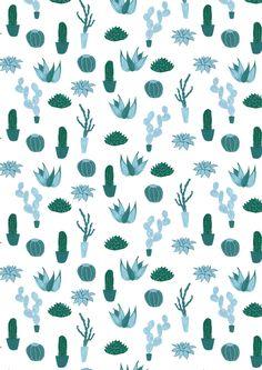 Cacti | Maya Bee Tumblr, August 2013