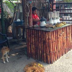 Venta de jugos naturales sobre la famosa Carretera de Oro - El Salvador | suchitoto.tours@gmail.com
