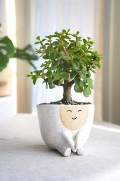 flower pot Ceramic handmade planter pot Maya Perfect for the modern home, this white, speckled stoneware planter is perfect for a small to medium size plant or succulent. Maya with her swe Decoration Plante, Home Decoration, Design Jardin, Ceramic Pottery, Ceramic Pots, Pottery Pots, Thrown Pottery, Slab Pottery, Ceramic Flower Pots