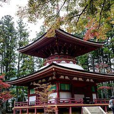 #高野山 #金剛峯寺 #Kongobuji_Temple #東塔