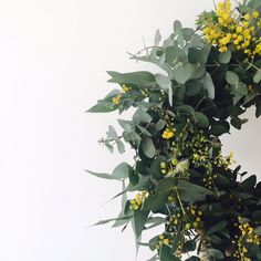 Don't you just love a native Australian Christmas Wreath made of Wattle and Eucalyptus leaves? Thanks to our friends @justbecauseblooms here's the one that kicked off our Christmas inspiration this year here at I Still Call Australia Home®