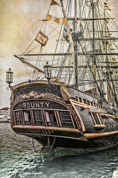 Was the Bounty a pirate ship? I sort of think it wasn't. Cool pic though :)