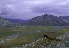 Arctic National Wildlife Refuge// 8 Exotic Destinations that are part of the US// Mother Nature Network