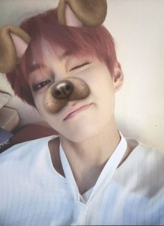 Image result for bts in puppy filter