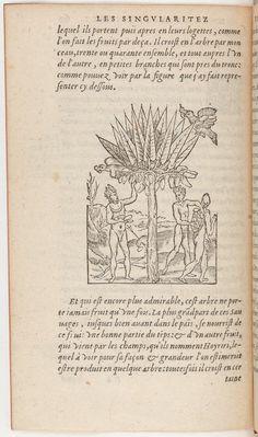 André Thevet, 1516‒1592. Les singularités de la France antarctique, autrement nommée Amérique, et de plusieurs terres et îles découvertes de notre temps. édition imprimée par Christopher Plantin (1520–1589), Anvers, 1558
