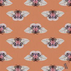 Moth 11 Franka's eyed-silkmoth Automeris frankae (in italics) Illustration Sketches, Pattern Illustration, Illustration Artists, 30 Day Drawing Challenge, Illustrators On Instagram, Pretty Cool, Special Day, Moth, Drawings
