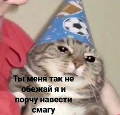 Cute Memes, Funny Memes, Pictures With Meaning, Russian Jokes, Hello Memes, Happy Memes, Response Memes, English Memes, Mood Pics