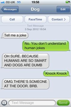 """16 Hilarious 'Dog Texts' That Perfectly Sum Up How Adorably Dumb Dogs Are - Funny memes that """"GET IT"""" and want you to too. Get the latest funniest memes and keep up what is going on in the meme-o-sphere. Message Text, Funny Text Messages, If Dogs Could Text, Funny Dog Texts, Hilarious Texts, Funny Dogs, Funny Fails, 9gag Funny, Dumb Dogs"""