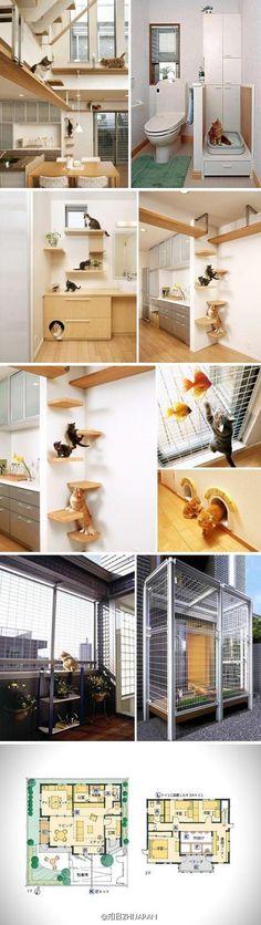 旭化成HOMES株式会社设计的宠物共生住宅