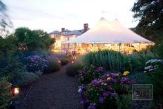 Wedding Reception - Photography by christianothstudio.com, Flowers by marthasvineyardweddingflowers.com
