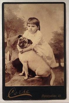 Cabinet-photo-of-little-Vemont-GIRL-with-her-PUG-DOG
