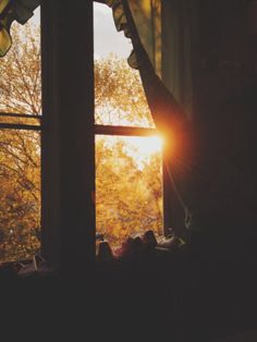 autumn through the window Autumn Aesthetic, Autumn Cozy, Dusk To Dawn, Window View, Through The Window, Morning Light, Light And Shadow, Belle Photo, Autumn Leaves