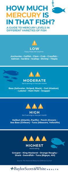 Worried about mercury in fish? Here's a helpful guide for choosing between types of fish. Vegan Recipes Easy, Fish Recipes, Mercury In Fish, Pesco Vegetarian, Omad Diet, Pescatarian Diet, Black Cod, Different Fish, Vegetarian Protein