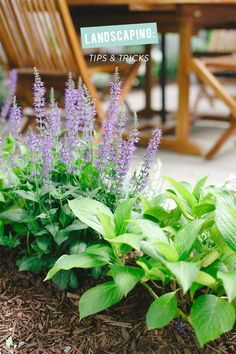 Landscaping Tips & Tricks with Lowe's | Photography: Ruth Eileen Photography - rutheileenphotography.com  Read More: http://www.stylemepretty.com/living/2014/06/24/landscaping-tips-tricks-with-lowes/