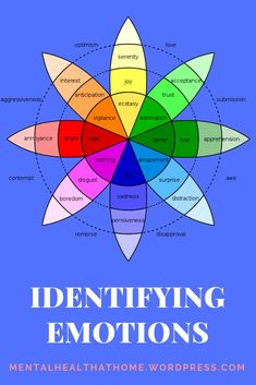 Blog post: Identifying emotions