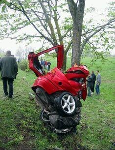Mustang vs Tree