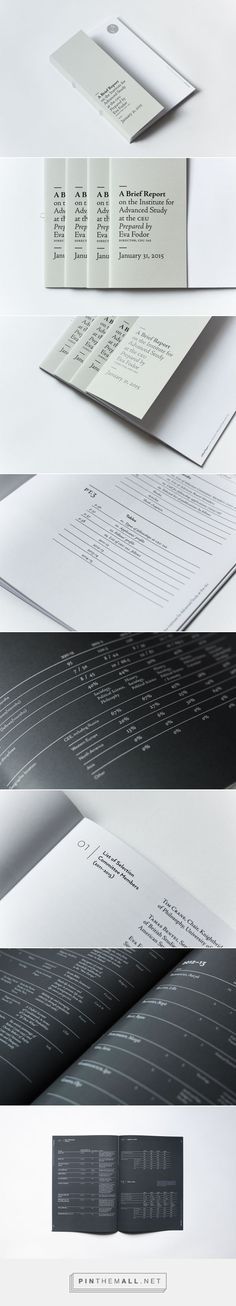 IAS Report on Behance...