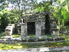 (Cozumel) Exploring the San Gervasio Mayan ruins (Mayan goddess Ixchel) used 200 AD to the Spanish conquest
