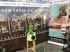 Des italiens ont créés un système qui permet de purifier l'air à l'aide d'une plante et de son pot connecté #CES2016 #eurekapark #labfabrici Ces 2016, Pots, Air Purifier, Aide, Indoor Plants, Instagram Posts, Outdoor, Life Hacks, Plant