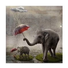 £2.69 GBP - Diy 5D Diamond Painting Elephant Diamond Embroidery Cross Stitch Canvas Tool Kit #ebay #Home & Garden