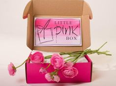 subscription boxes for women 1000 images about subscription boxes on 30926