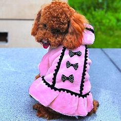 Lpet Pet Fashion Bowknot Hooded Warm Dress for Pets Dogs(Assorted Color,Sizes) – CAD $ 8.46