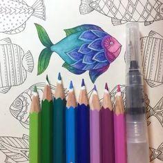 WATER BRUSH ➕ LÁPIS AQUARELÁVEL STAEDTLER Pra mim, a combinação perfeita!!! Hahaha víciada em usar desse jeito! REPOSIÇÃO NO SITE www.jardimsecretoinspire.com.br ⬅️ Garanta a sua Water Brush e os 36 lápis de cor aquareláveis da Staedtler!!! Acaba super rápido! ✏️ AMO!!! ☺️ ------------------------------------------------------------ #⃣ Use #jardimsecretoinspire para que seu colorido seja compartilhado aqui no nosso perfil!! -----------------------------------------------------...