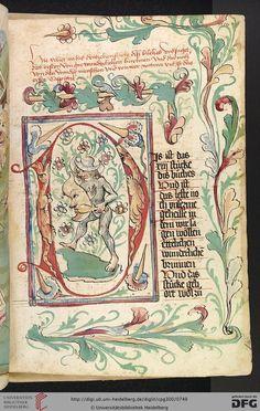 Cod. Pal. germ. 300 Konrad von Megenberg Das Buch der Natur Hagenau - Werkstatt Diebold Lauber, um 1442-1448? Page: 358r D-Initiale mit gewappnetem wildem Mann im Binnengrund
