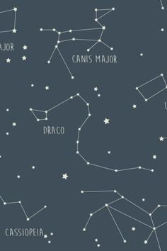 Look up to the sky and you can see an alignment of beautiful constellations filling your walls with a mystical ambience. Seen here in the Ink colourway Up To The Sky, Blue Wallpapers, Looking Up, Constellations, True Colors, Savannah Chat, Mystic, Walls, Ink