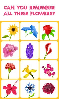 Flowers Match: Memory Game: is a concentration-style educational memory game for kids and adults to experience the worlds most amazing Flowers. Visit us at apps.eddypaddy.com