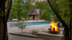 Concrete Pool and Landscape Design