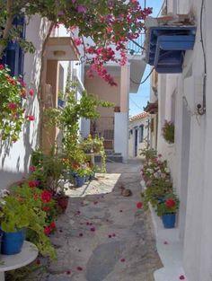 Explore the stunning Greek island of Skopelos in the Sporades.