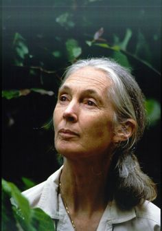 Jane Goodall: If you don't know what she's done for our animals, look it up. She's a truly powerful and inspirational woman