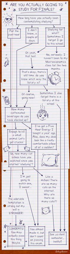 Preparando los exámenes finales? #Humor #finales #selectividad #infografia