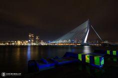 "Erasmus bridge Rotterdam ""The swan"" - Night shot of the Erasmus bridge in Rotterdam also named as the swan cause of its shape."